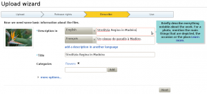 A screenshot of the third step of the upload wizard prototype, showing a step-by-step process. The current step displays a thumbnail of the uploaded picture and fields for the user to add descriptions (in several languages), a title and categories